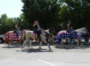 July 4 Parade Horses